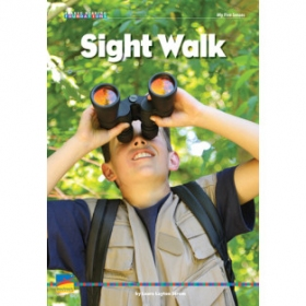 Sight Walk Big Book