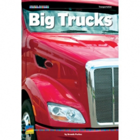 Big Trucks Big Book
