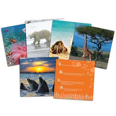 Wild About Animals Snapshots™  Critical Thinking Photo Cards  Q&A 写真カード 野生動物